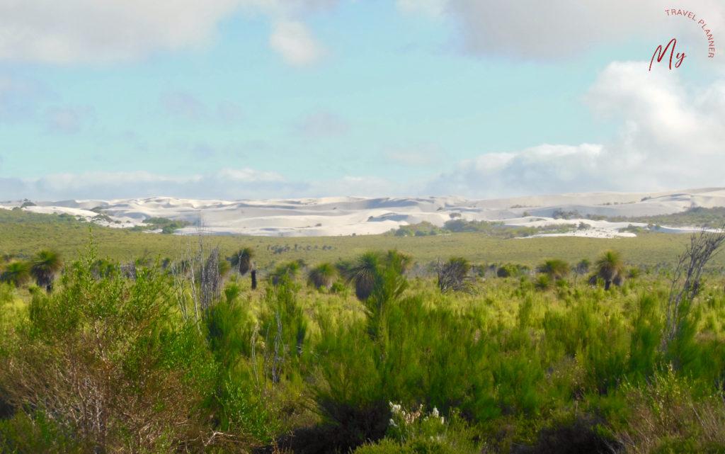 panorami sulla strada per il deserto dei pinnacoli