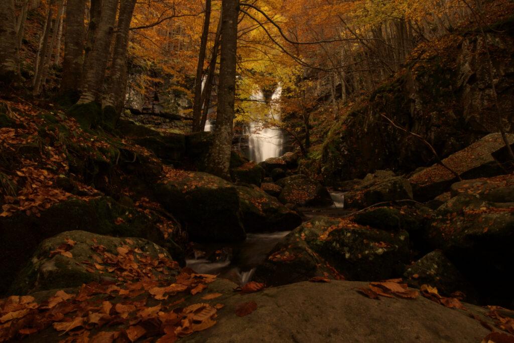 Foliage alle Cascate del Dardagna
