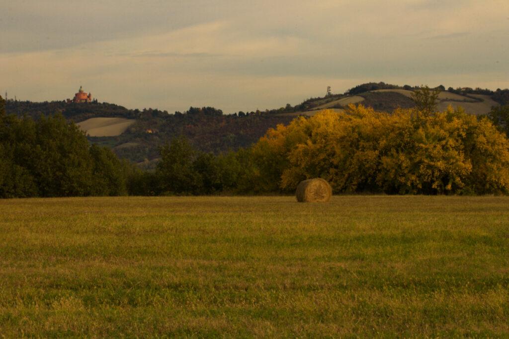 Via Moglio a Borgonuovo